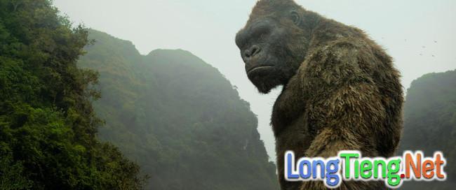 """After – credit trong """"Kong: Skull Island"""" hé lộ chìa khóa dẫn tới vũ trụ quái vật. - Ảnh 1."""