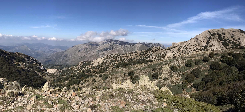 big vista