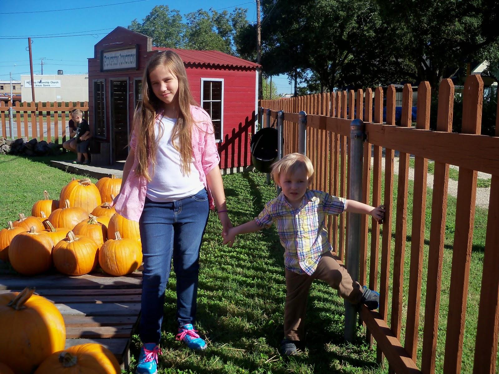 Pumpkin Patch 2014 - 116_4467.JPG