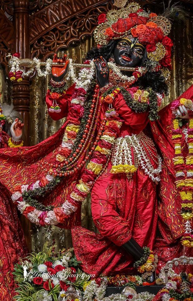 ISKCON Mayapur Deity Darshan 06 Jan 2015 (20)
