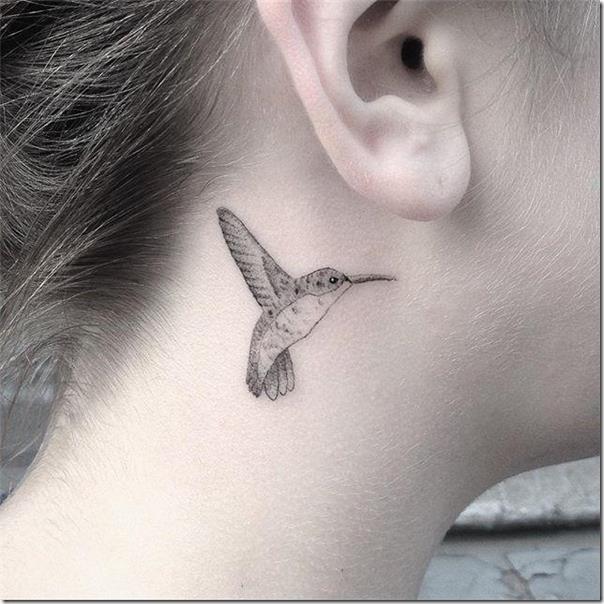 el-colibr-se-encuentra-delicado-en-cualquier-parte-del-cuerpo