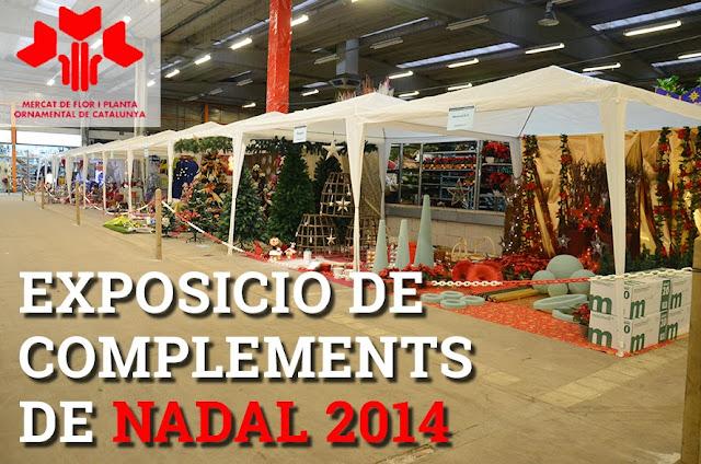 Exposició de Complements de Floristeria i Jardineria de Nadal 2014 - DSC_0031.JPG