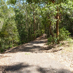Trail by pond in Richley Reserve in Blackbutt Reserve (401629)