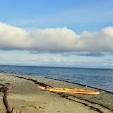 Tree Island paddle