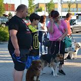 On Tour in Tirschenreuth: 30. Juni 2015 - DSC_0008.JPG