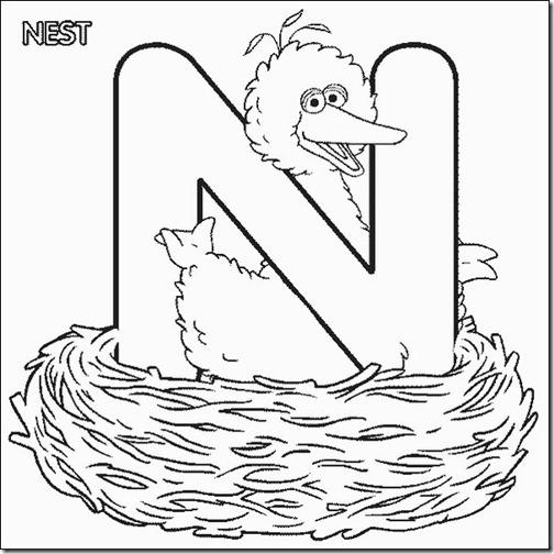 n_bigbird