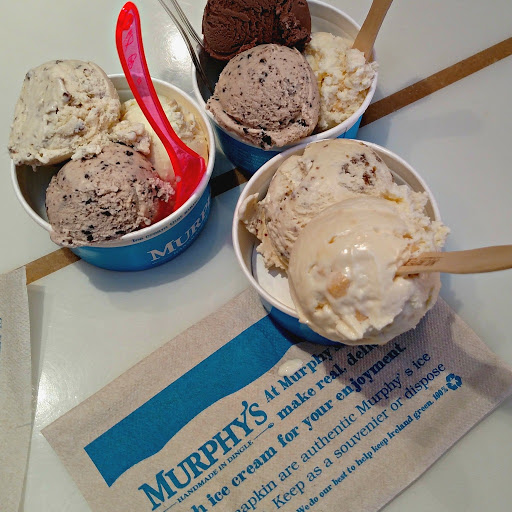 Murphy's Ice Cream. Ireland for Foodies. From Ireland Family Vacations