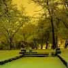 06-01-2013 | Sosnowiec | Park Sielecki