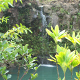 Hawaii Day 5 - 114_1475.JPG