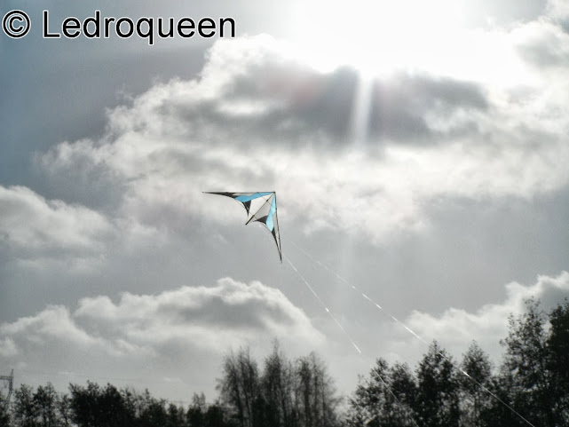 Un tout nouveau Cerf-Volant en vol