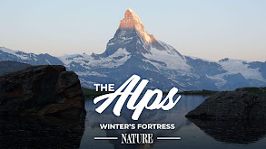 The Alps: Winter's Fortress thumbnail