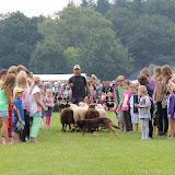 Paard & Erfgoed 2 sept. 2012 (82 van 139)