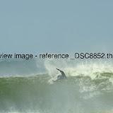 _DSC8852.thumb.jpg
