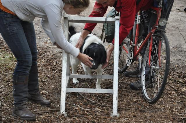 Survival voor Baas en Hond 2012 - DSC_0650.JPG