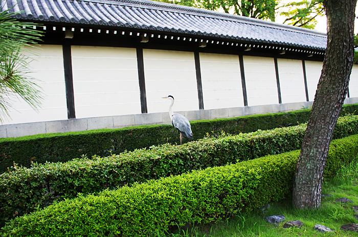 KyotoStation08.jpg