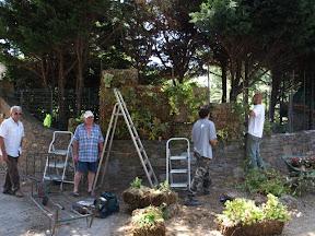 réalisation d un mur végétal chez un particulier à GASSIN
