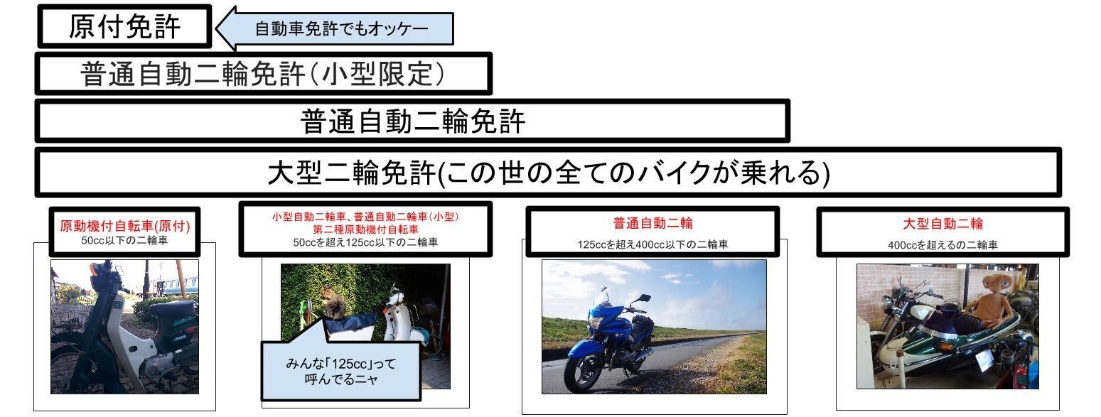 バイク並ぶ.jpg