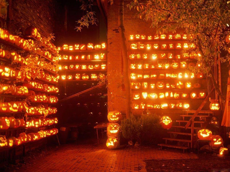 Shining Wall, Halloween