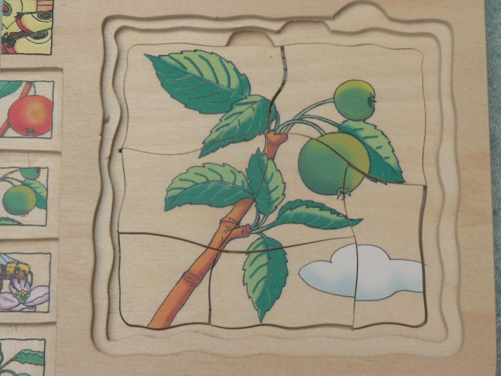 De Kleuters maken zelf een fruit- en groentewinkel. - P1260568.JPG