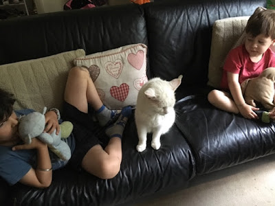 boys sitting on the sofa with cat sitting between them
