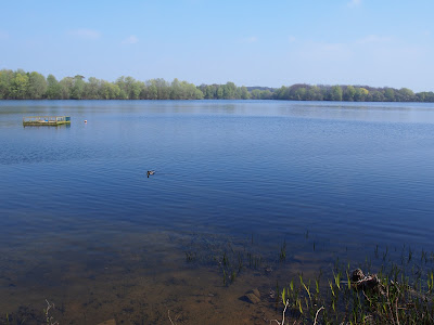 Alton Water - the former fishing ponds of Tattingstone Hall