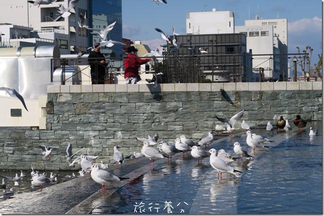 四國德島 葫蘆島周遊船 新町川水際公園 (68)