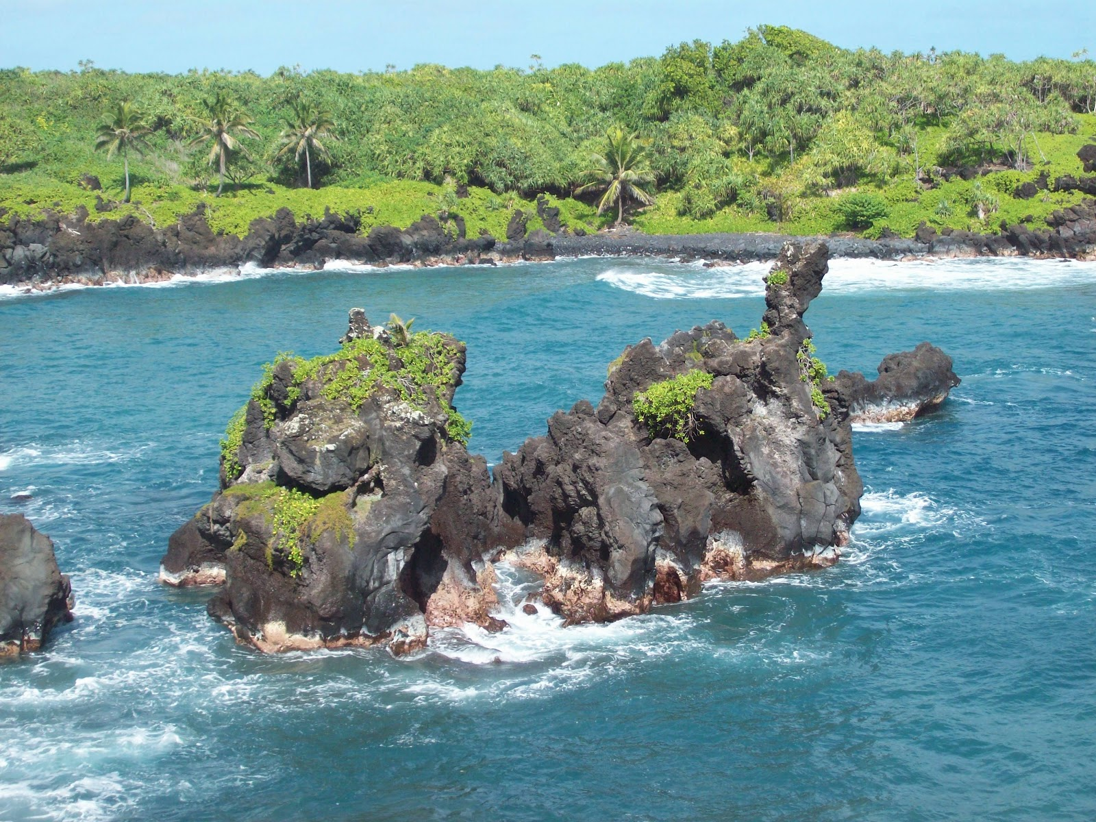 Hawaii Day 5 - 114_1545.JPG