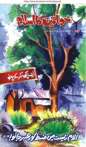 woman risalay on computer, latest magazines for girls, girls besy risalay, islami kitabain for womans, mastoraat in magazines, khawateen ka islam latest collection, khawateen ka islam all shumras in a gallery