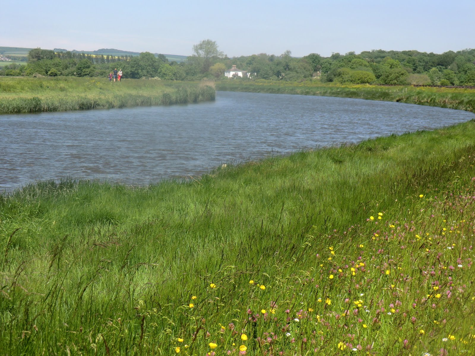 CIMG7301 River Arun near Arundel