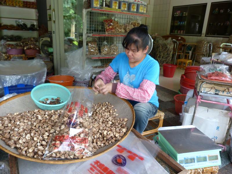 Tainan, sources chaudes de Guanziling .J 5 - P1210054.JPG
