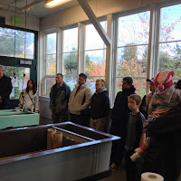 Issaquah Salmon Hatchery Tour - IMG_0463.JPG