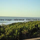 _DSC7344.thumb.jpg