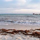 Key West Vacation - 116_5565.JPG