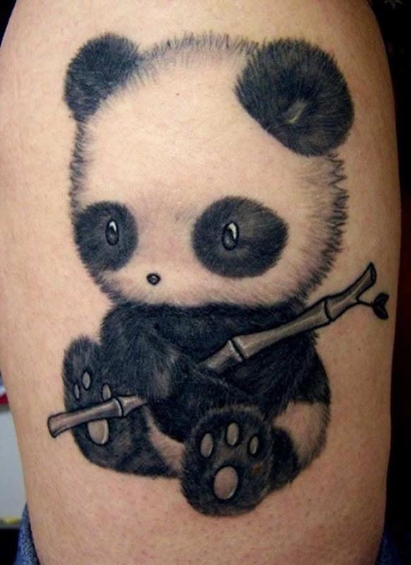 Este lindo bebê panda