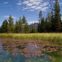 20110921_hosmer_lake_P9180506