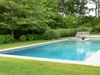 Privacy at a pool enclosed by trees and grasses.