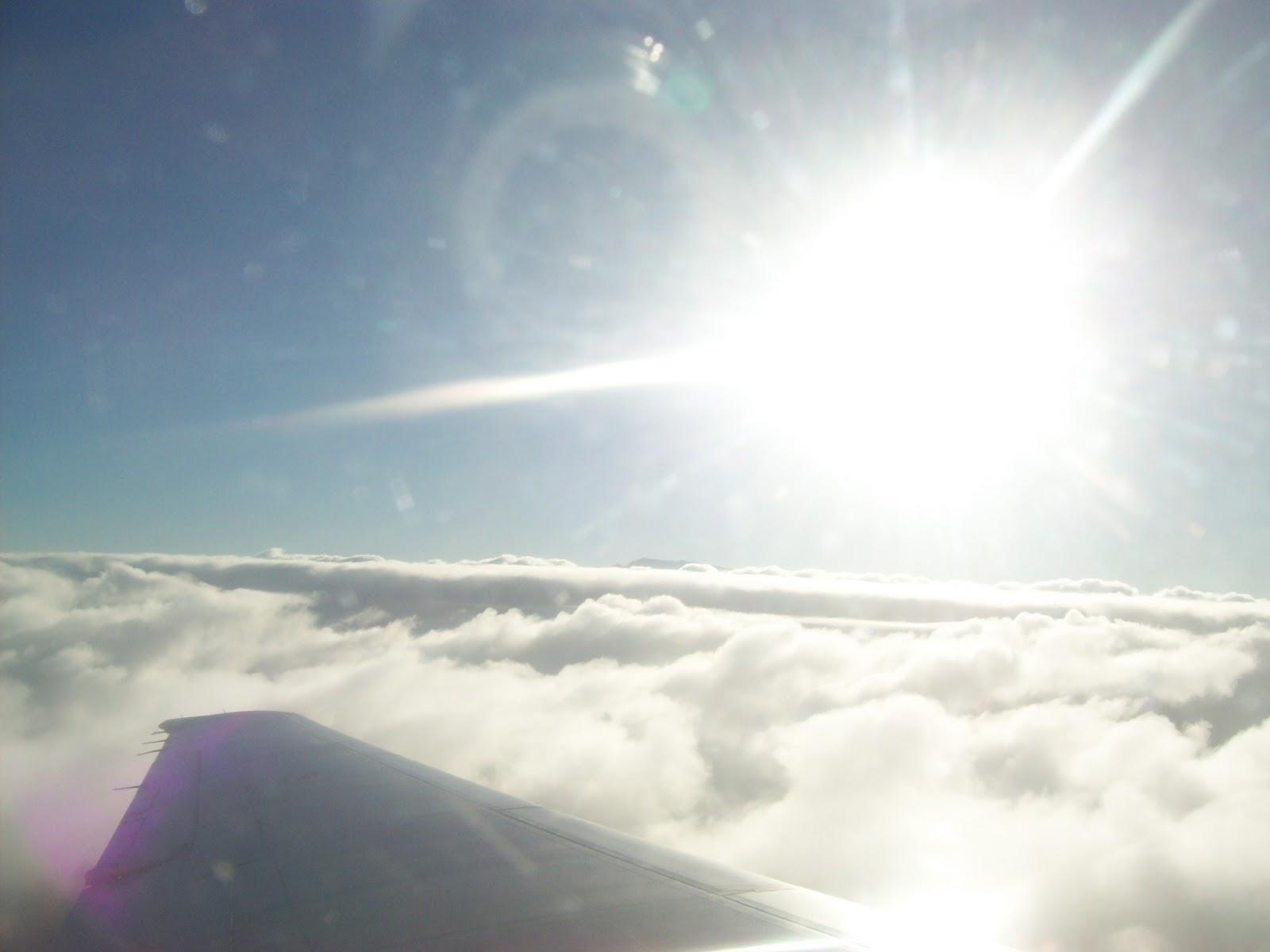 Hawaii Day 8 - 100_8200.JPG