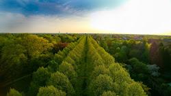 Französicher Garten in Celle - Celle-von-oben (1 von 9).jpg