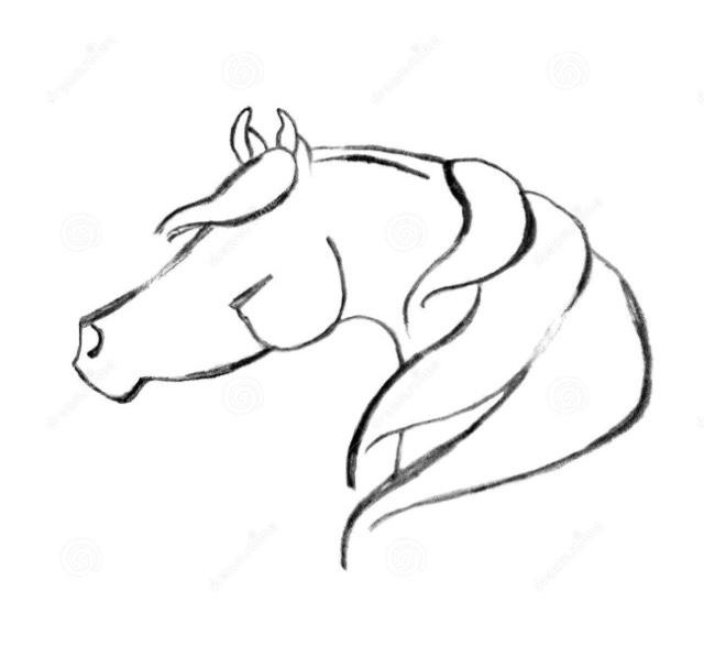 Matematica e fisica a s 2018 19 cavallo stilizzato for Disegno cavallo stilizzato