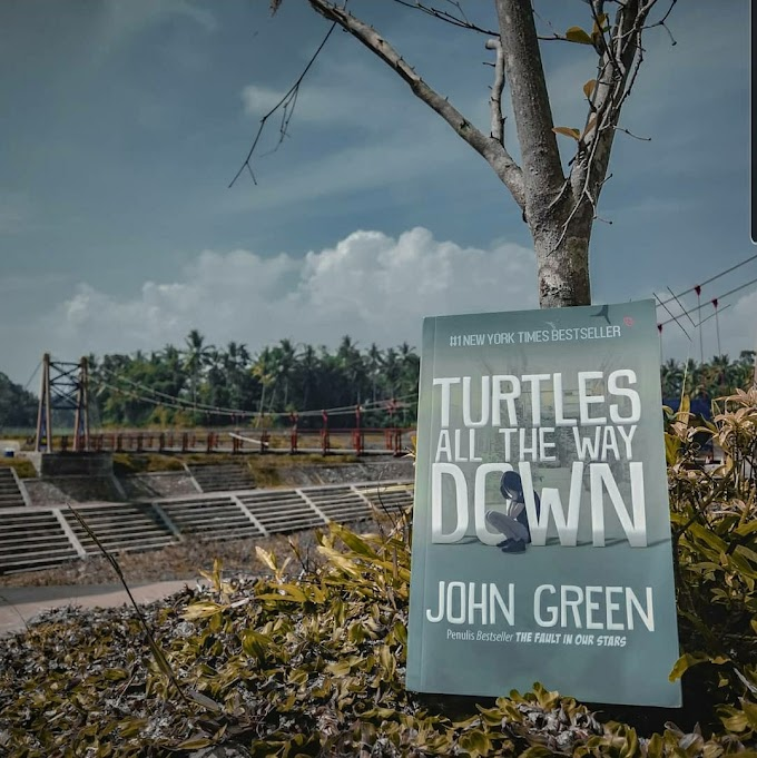 Review Buku Turtles All The Way Down | Jhon Green