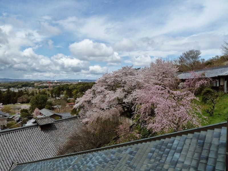 2014 Japan - Dag 8 - mike-P1050743-0277.JPG