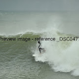 _DSC0477.jpg