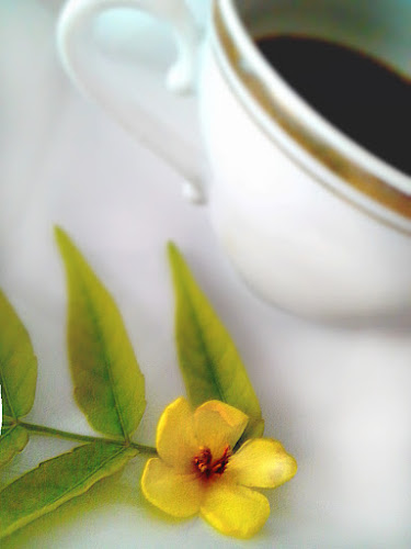 Dalla parte del caffè di glasswein