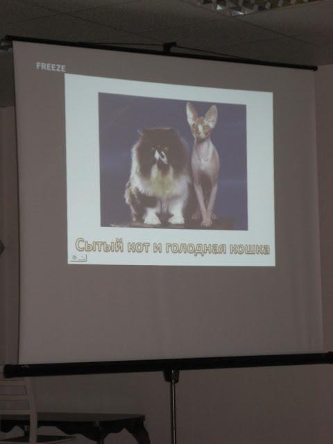 Temaatiline kontsert teemal Imelised lood loomadest - kontsert%2B058.jpg