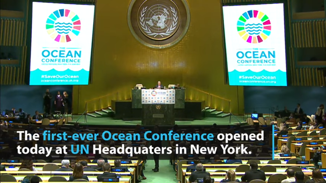 The opening session of the first-ever United Nations Ocean Conference, 5 June 2017. UN officials stressed the need to protect and conserve the world's oceans for future generations. Photo: United Nations
