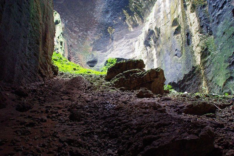 gomantong-caves-8