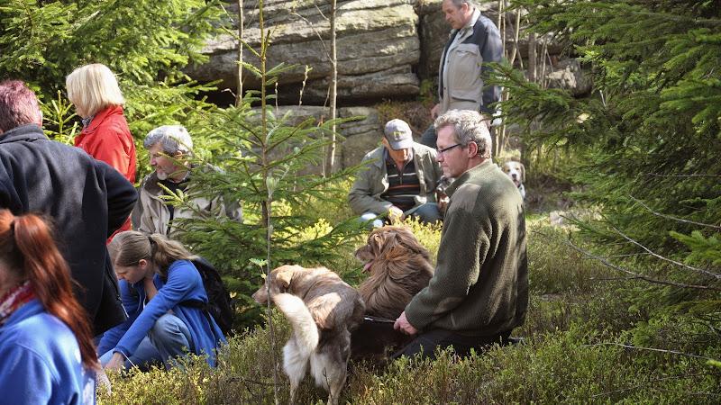 2014-04-13 - Waldführung am kleinen Waldstein (von Uwe Look) - DSC_0443.JPG