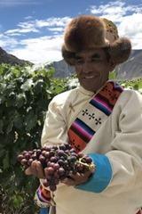 tibet-hrozny