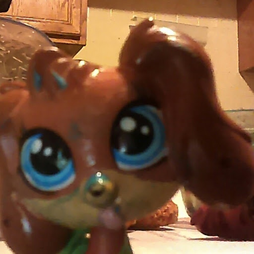 Lps Doglover review