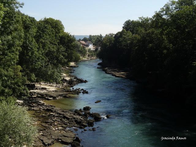 passeando - Passeando pela Suíça - 2012 - Página 14 DSC04938
